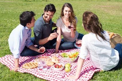 pest-free-picnic
