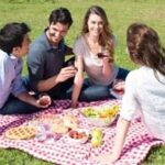 Enjoy a Pest-Free Picnic with These 11 Tips