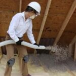 Pest Control Attic Insulation for Winter