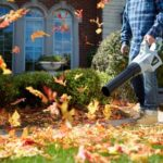 Fall Cleanup to Pest-Proof Your Home